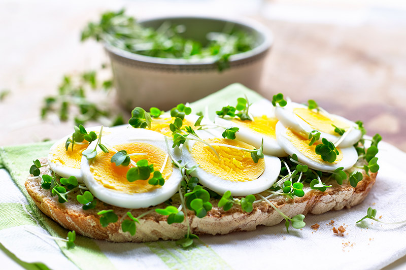 Egg and salad cress on sourdough