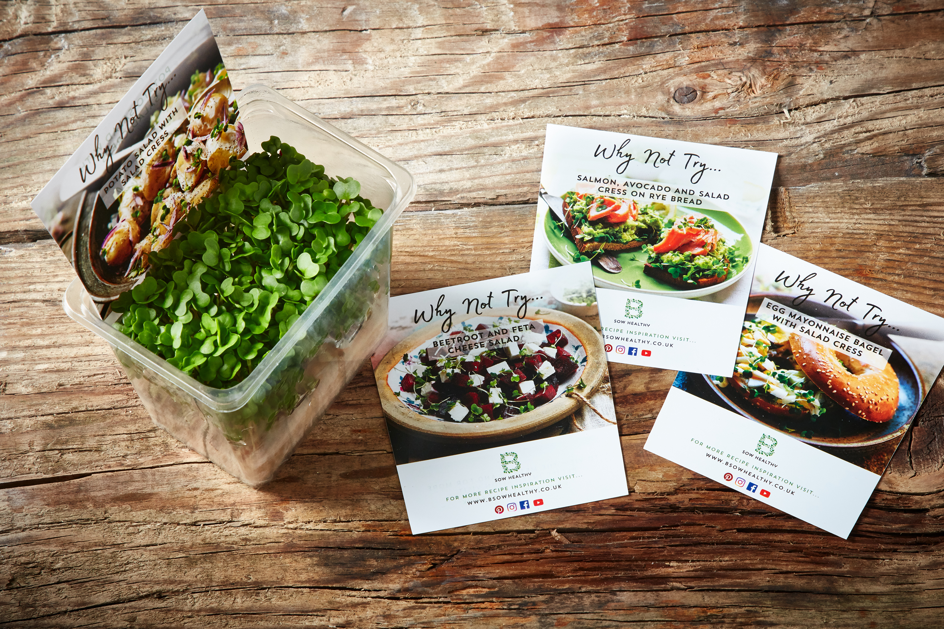 Salad cress recipe cards