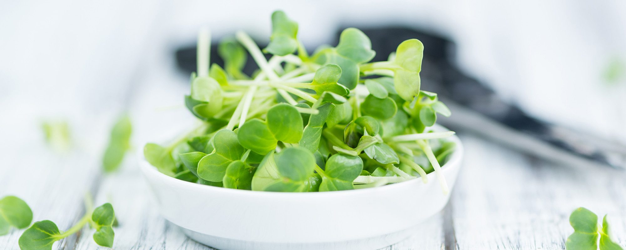Cutted Cress on a vintage background as detailed close-up shot (selective focus)