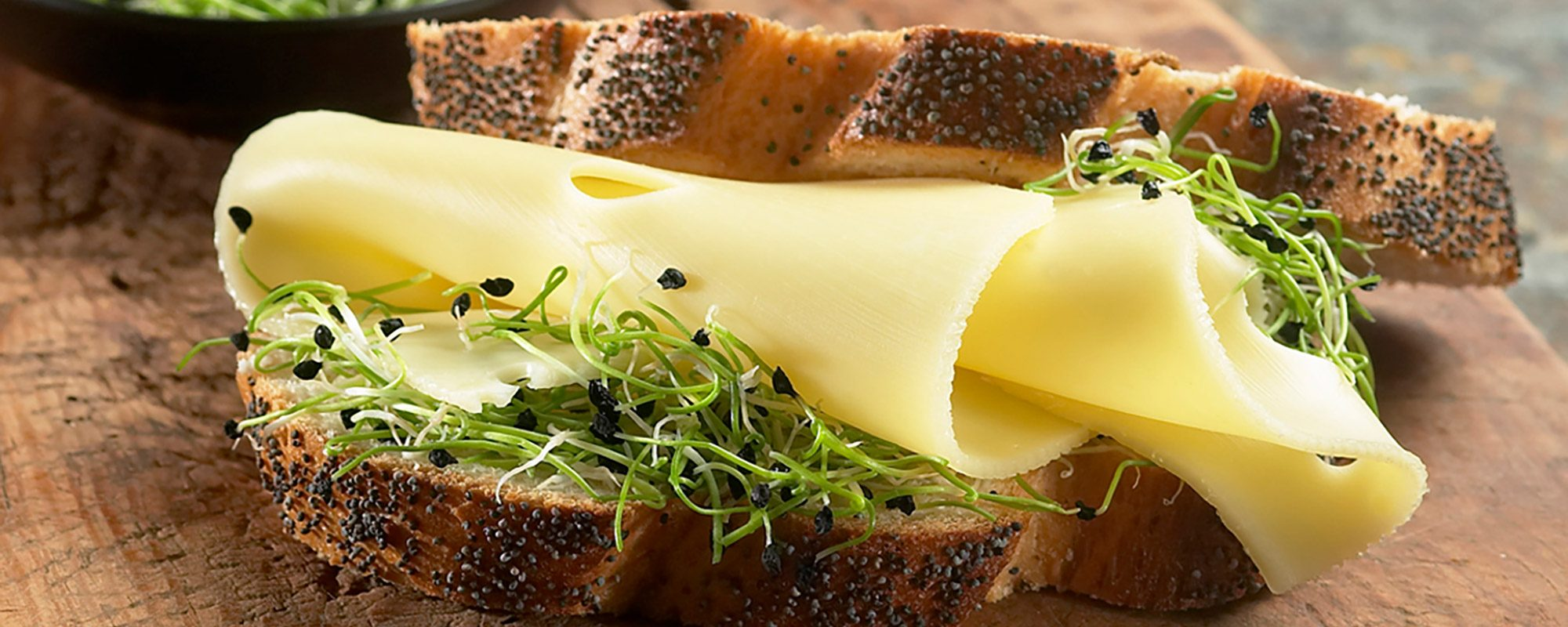 Cheese sandwich with Garlic Chives