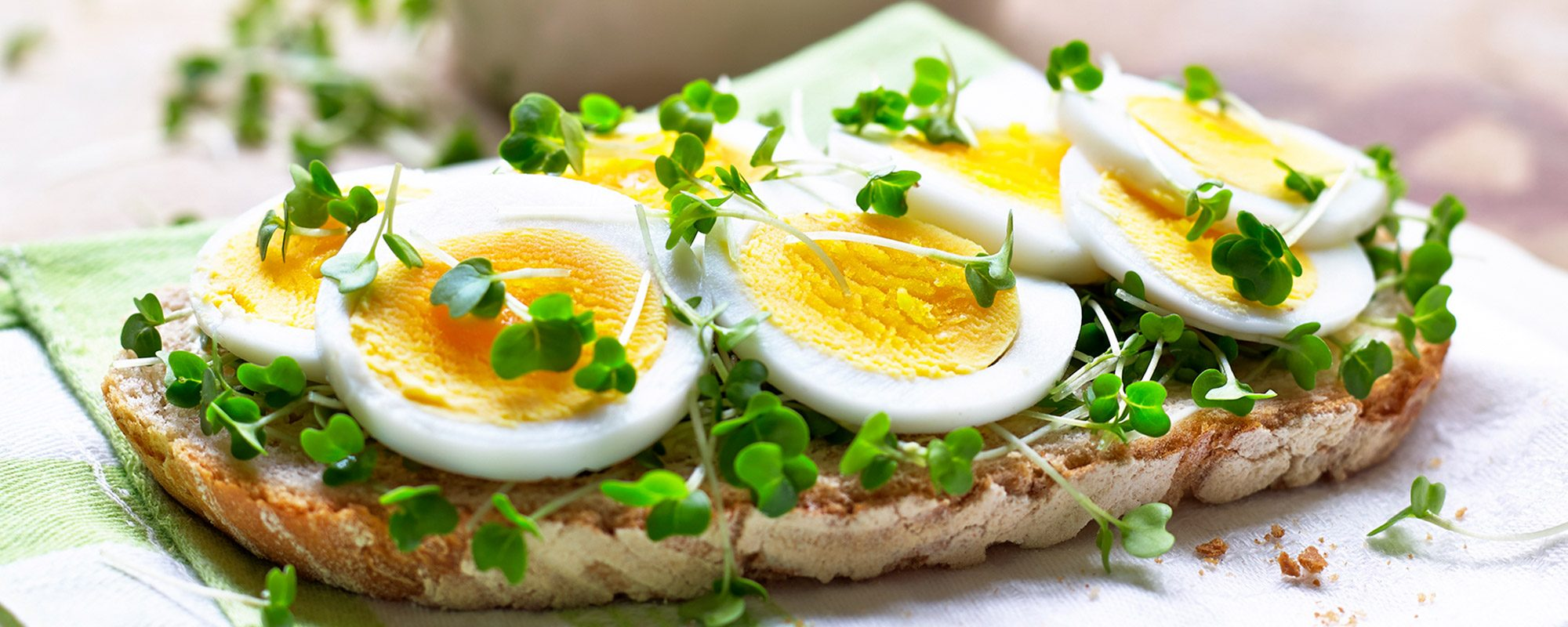 Sliced egg and salad cress on sourdough